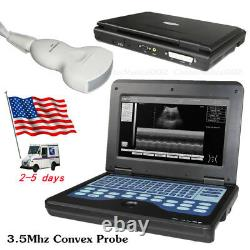 US Portable Ultrasonic Ultrasound Scanner/Machine 3.5MHz Convex Transducer Probe