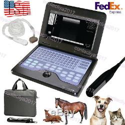 VET Veterinary Laptop Ultrasound Scanner Machine 2 Probes For Big/Small Animals