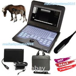 Veterinary Laptop Ultrasound Scanner Machine Animal 7.5 Rectal Probe, CowithHorse