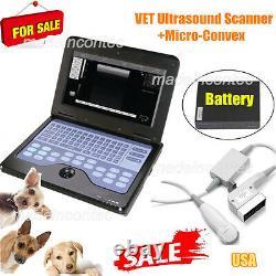 Veterinary Laptop Ultrasound Scanner Machine VET Micro Convex Probe, Cat/Dog/Pet