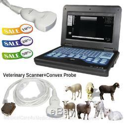 Veterinary Portable Ultrasound Scanner Ultrasound Machine Convex Probe Pig/Goat