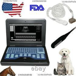 Veterinary Ultrasound Scanner VET Laptop Machine Rectal+Micro-Convex Probe NEW